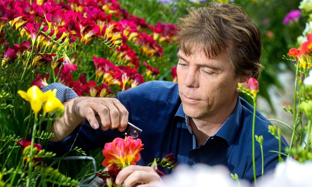 """Een succesvolle geïntegreerde teeltwijze zonder bodemroofmijten is voor Peter Penning ondenkbaar. """"Ze zijn dé remedie tegen bollenmijt."""""""