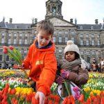 Tulpen Promotie Nederland dendert door