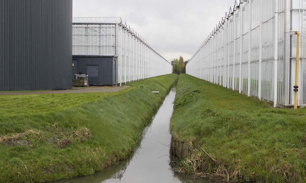 Slootwater naast glastuinbouwbedrijf