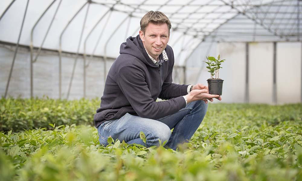 Johan Janse op zijn theeplantage in Zundert.