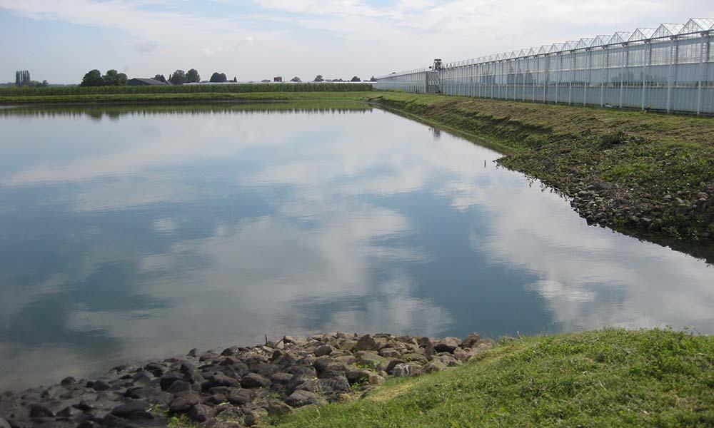 Tuinbouwgietwaterbassin in tuinbouwgebied Next Garden