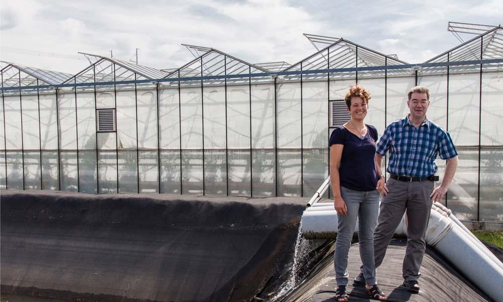 Glastuinbouw Waterproof en LTO Glaskracht Nederland werken eraan dat telers hun emissies op het oppervlaktewater en de riolering verder terugdringen.