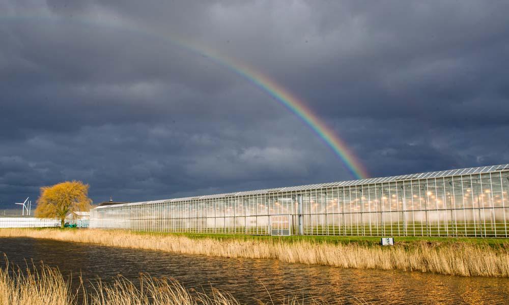 lang niet iedereen heeft zijn waterstromen goed op orde, concluderen water- en hoogheemraadschappen.