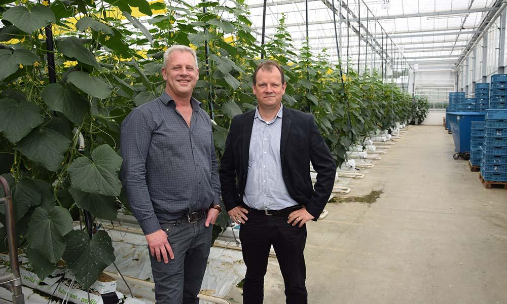 Ad Verhoeven (links) van Kwekerij Verhoeven en Wim Steeghs (rechts) van Philips Horticulture LED Solutions.