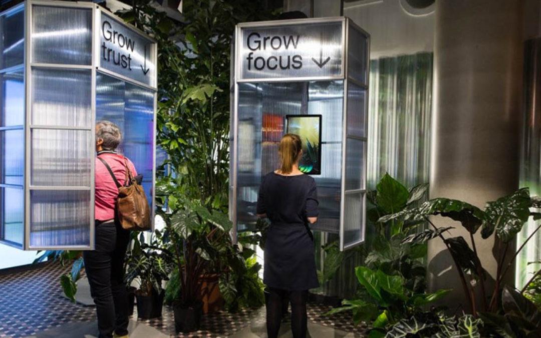 Let it Grow maakt stedelingen gelukkiger met planten en bloemen