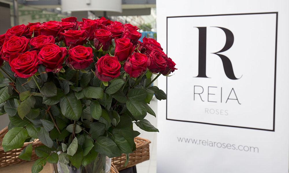 boeket Red Naomi van Aleia Roses
