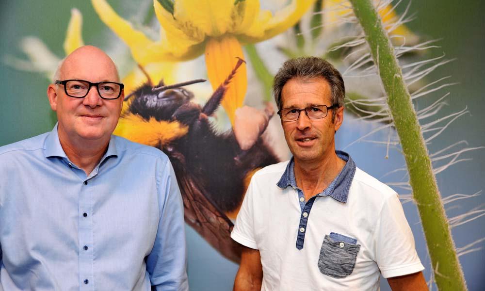 Samenwerking tussen gespecialiseerde leveranciers en onderzoekers heeft geleid tot de literatuurstudie 'Bloei, bestuiving en vruchtzetting van tomaten'.