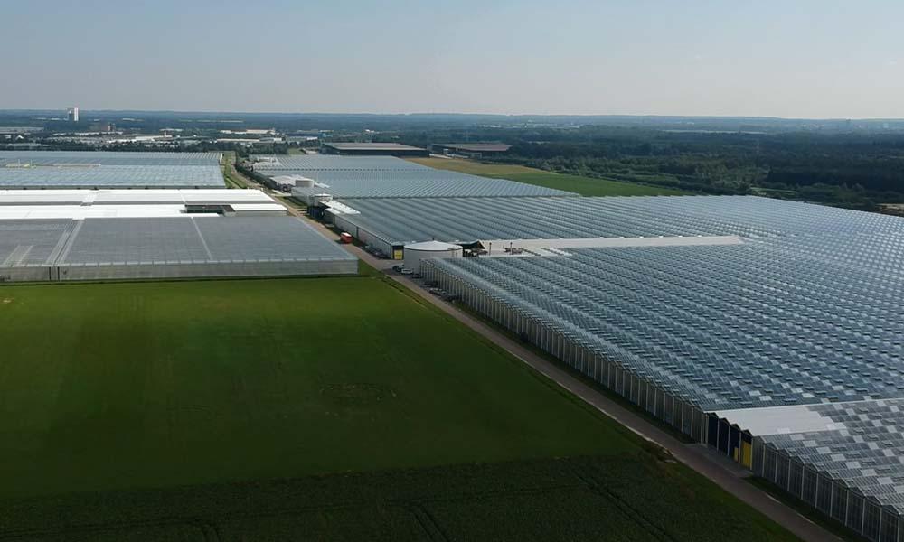 Wayland Developments noteert een groei in de vraag naar (grootschalige) duurzame glastuinbouwgebieden, bedrijventerreinen en woonomgevingen.