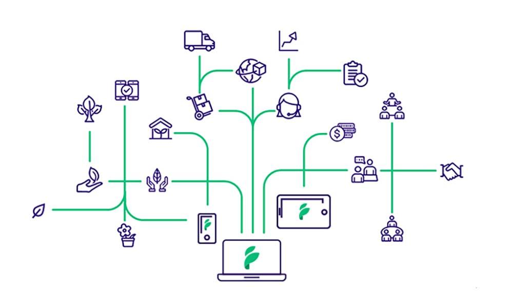 Een schematisch overzicht van het wereldwijde, digitale platform Floriday.