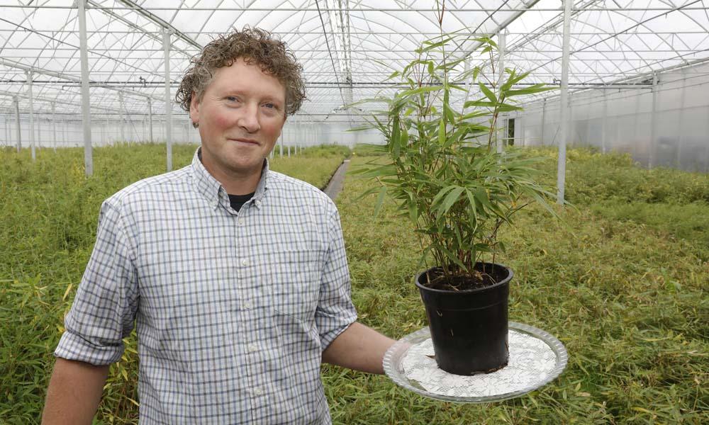 'Mijn passie ligt vooral in het karakter van de bamboeplant'
