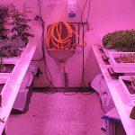 Het project heeft als doel het ontwerpen en testen van een kleine 'plantfabriek', om het dieet van astronauten met verse groenten te verrijken.