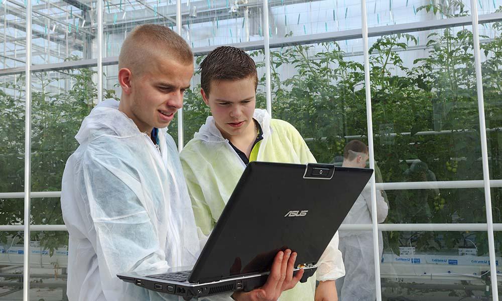 InnovationQuarter start proeftuin voor digitalisering in de glastuinbouw