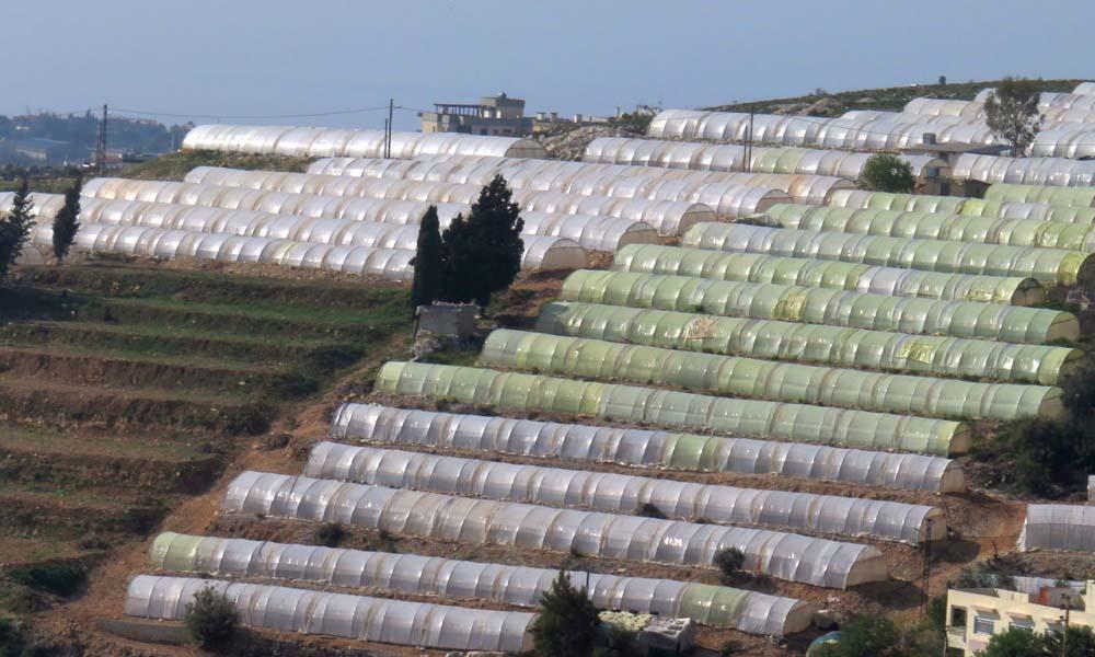 Traditionele kassen in Libanon
