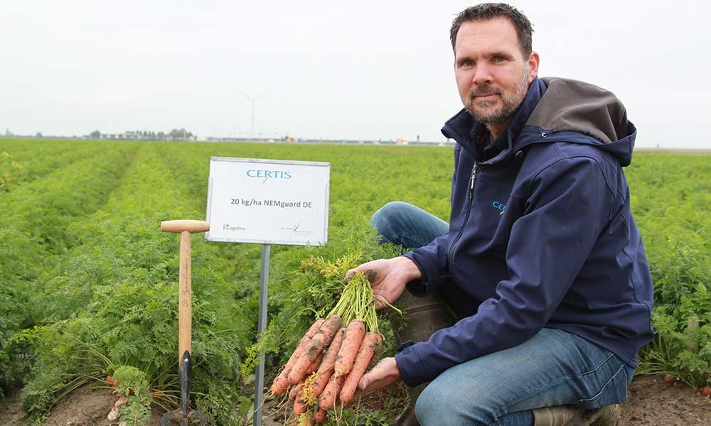 Maarten van der Marel beoordeelt een wortelproef op Proefboerderij Rusthoeve in Colijnsplaat.