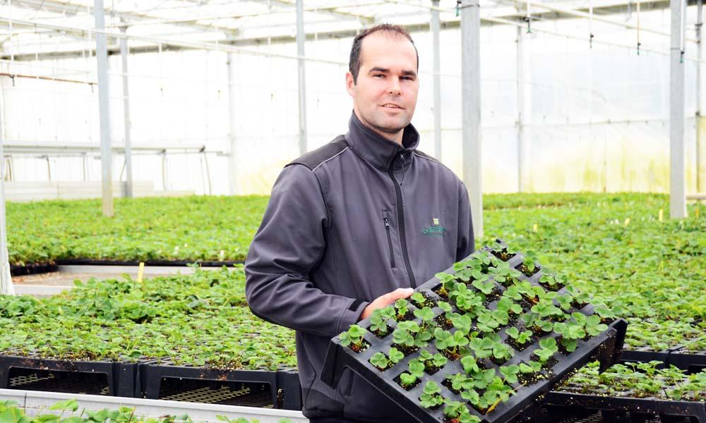 Plantenkweker Genson behandelt het gietwater met positief geladen koperionen. Die vangen negatief geladen sporen van schimmels en bacteriën weg.