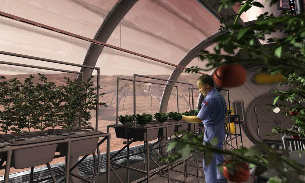 Een conceptbeeld van hoe de teelt van groenten op Mars er ongeveer uit zal zien.