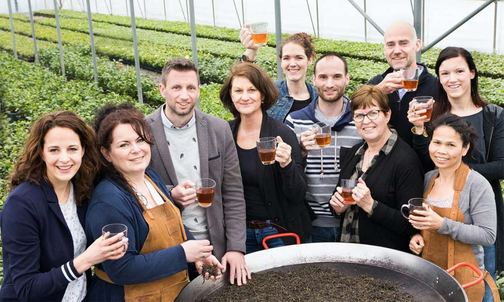 Special Plant Zundert thee