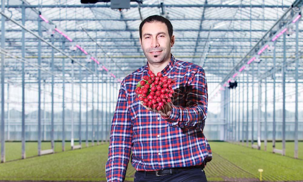 Op zijn nieuwste locatie in 's-Gravenzande heeft Zülküf Yilmaz afgelopen najaar op 2,5 ha een hybride belichtingsinstallatie laten aanleggen.