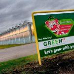 De tomatenkas van Greenco in Someren