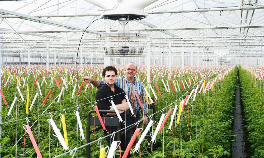 Tomatenbedrijf Van den Broek is in stappen van een Nederlands in een Duits bedrijf veranderd. Zowel hun interesse in Het Nieuwe Telen als de Duitse energiewetgeving hebben gezorgd voor opmerkelijke keuze, zoals een WKK via lease op biogas en een systeem met twee onder elkaar geplaatste ventilatoren.