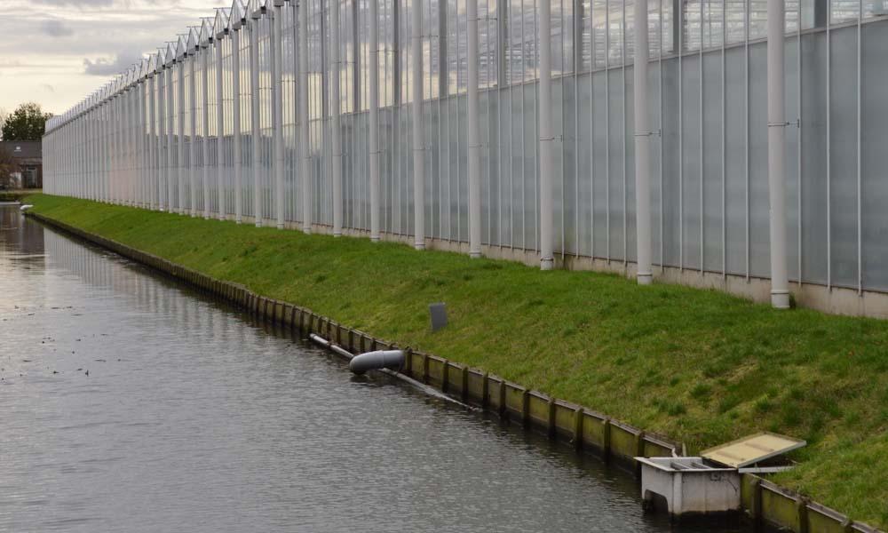 Milieubelasting door gewasbescherming glastuinbouw drastisch verlaagd