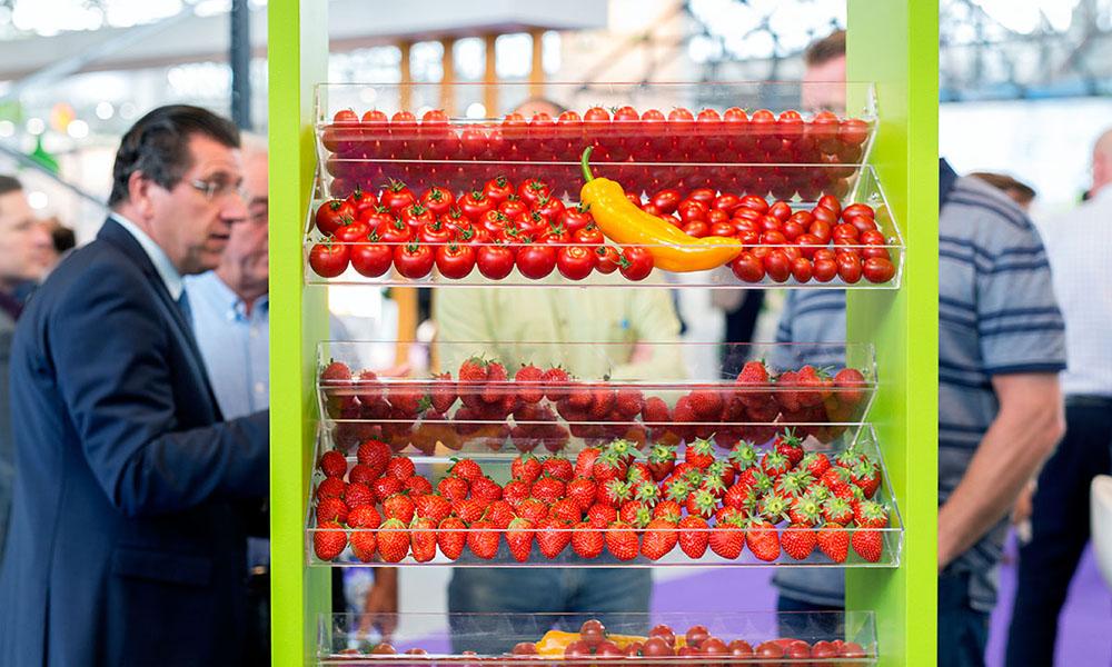 Vertical farming gaat via data en kunstmatige intelligentie naar telen zonder telers
