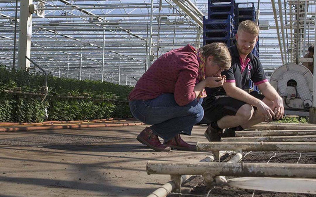 'Over vruchtbaarheid en bodemleven valt nog heel veel te leren'