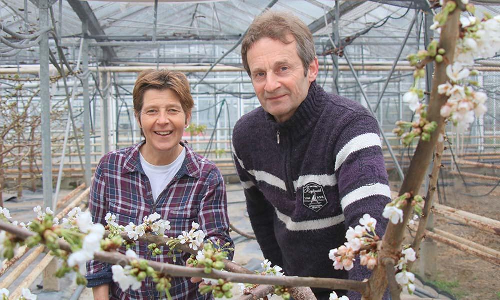 'Op een groot tuinbouwbedrijf ben je alleen aan het managen'