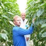 """Roel Klapwijk (voor) en Ruud Kaarsemaker: """"Met een jaarplan voor de elementen en bijhouden van de gegevens bouw je een eigen database op en leer je veel over het effect van de voeding."""""""