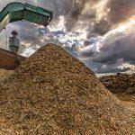 Vijftig hectare kassen in tuinbouwgebied Siberië verwarmd door snoeihout
