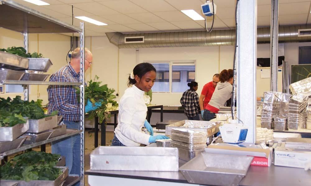 Grote belangstelling voor Wageningse studie Plantwetenschappen