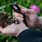 Relatie bodemleven, biostimulanten en gewasreactie is uitdagend proces