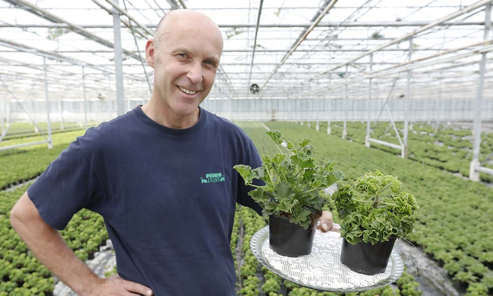 'Stijlvolle planten met een lekkere geur'