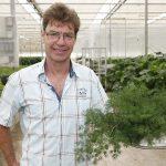 'De speelse planten groeien vanzelf weer aan'