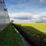 Gebiedsvisie voor toekomstbestendige glastuinbouw in De Kwakel