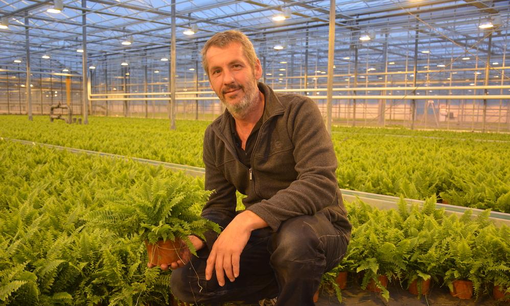 Peter de Boer van Debo Plant over de drie rampen die het bedrijf hebben getroffen.