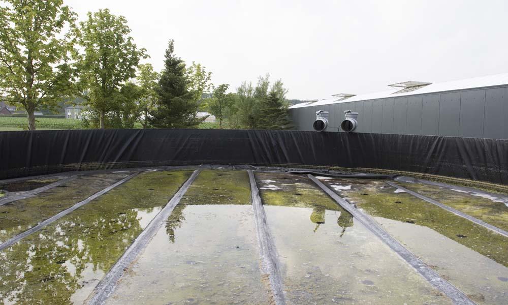 Water onderuit bassin halen is niet ongevaarlijk