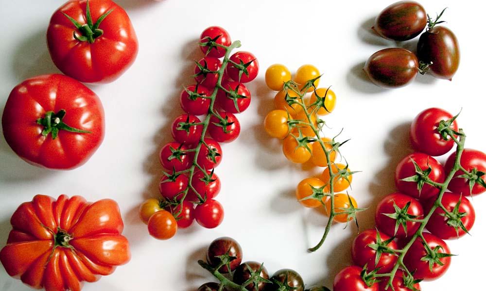 Lycopeen is een stof waarvan bekend is dat deze met name prostaatkanker remt. Deze komt voor in tomaten en wortelen. Door middel van veredeling zijn al rassen ontwikkeld die een hoger lycopeengehalte hebben.