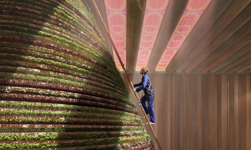 Het Hollandpaviljoen op de Dubai World Expo 2020 illustreert de verbindingen tussen water, energie en voedselproductie in een circulaire economie. Een opvallend element in het ontwerp van de Dutch Dubai is een enorme, kegelvormige zuil waarop permanent eetbare (blad)gewassen worden geteeld.