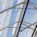 Ter Laak wint energieprijs met DaglichtKas, maar subsidie stopt