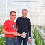 Rekenprogramma helpt teler aan te sluiten bij behoefte van de plant