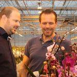 Phalaenopsisteler gebruikt gemiddelde PAR-meting als extra tool