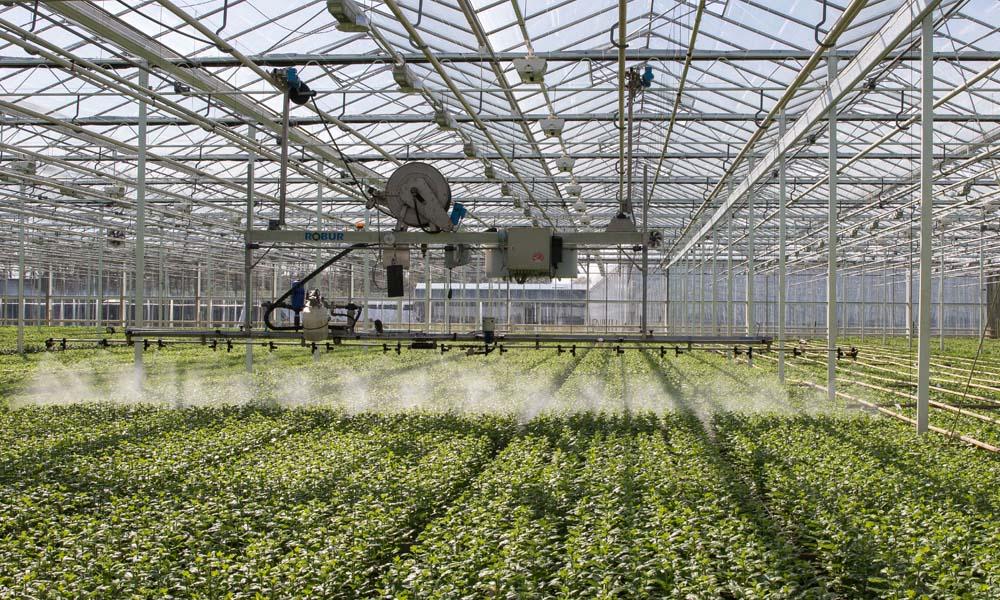 Groene gewasbeschermingsmiddelen kunnen rekenen op veel belangstelling sinds het gebruik van chemische middelen onder vuur ligt.
