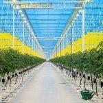 'Groene middelen zijn onmisbare stukjes van een grote puzzel'