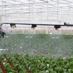 WUR onderzoekt motivatie vermindering gebruik gewasbeschermingsmiddelen