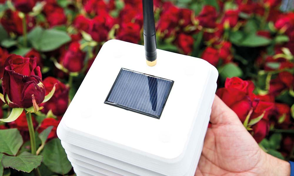 Een sensor van 30MHz. De inzet van draadloze sensoren in de kas wordt steeds meer gemeengoed.