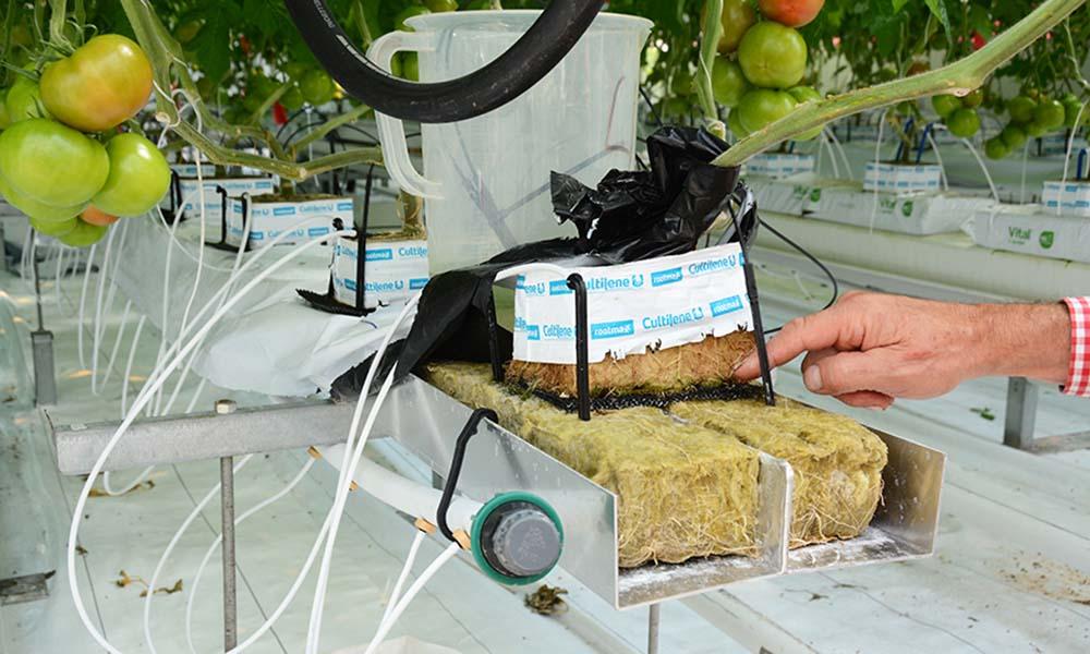 Hogere concentraties natrium in de mat mogelijk zonder schade