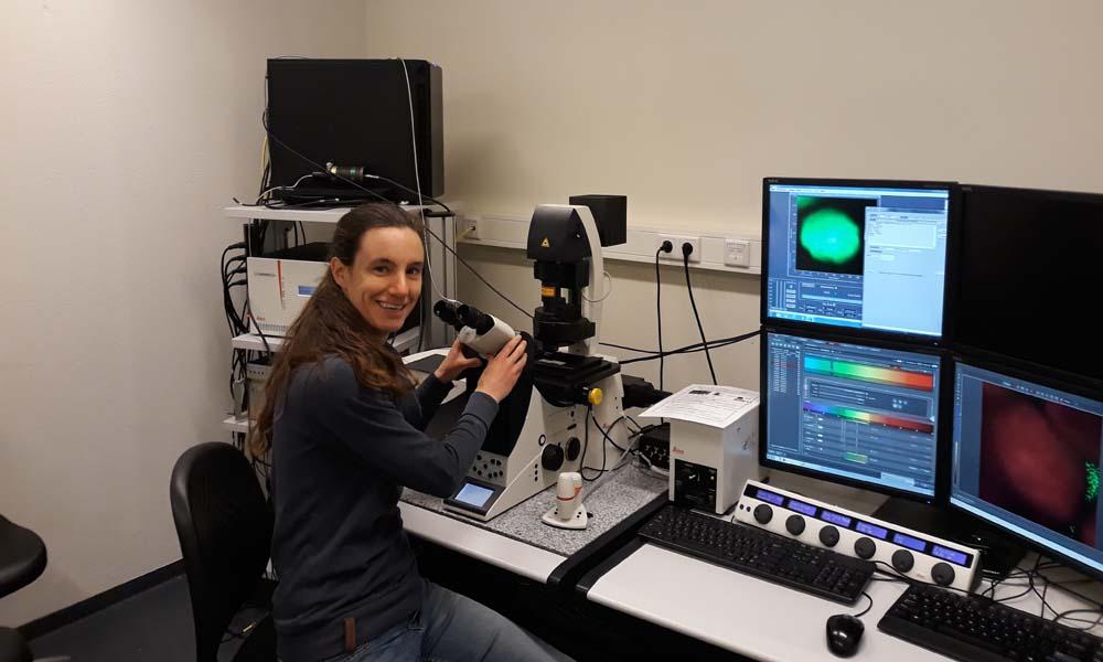 Onderzoekster Emilie Wientjes van Wageningen University & Research (WUR) heeft een Vidi-beurs ontvangen voor het onderzoeken van de flexibiliteit van fotosynthese. Met geavanceerde technieken gaat Wientjes onderzoeken hoe planten zich aanpassen aan de wisselende hoeveelheid en kleur van het licht dat op de bladeren valt.