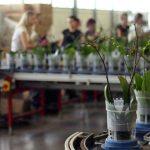 De glastuinbouw heeft meer technische mensen nodig