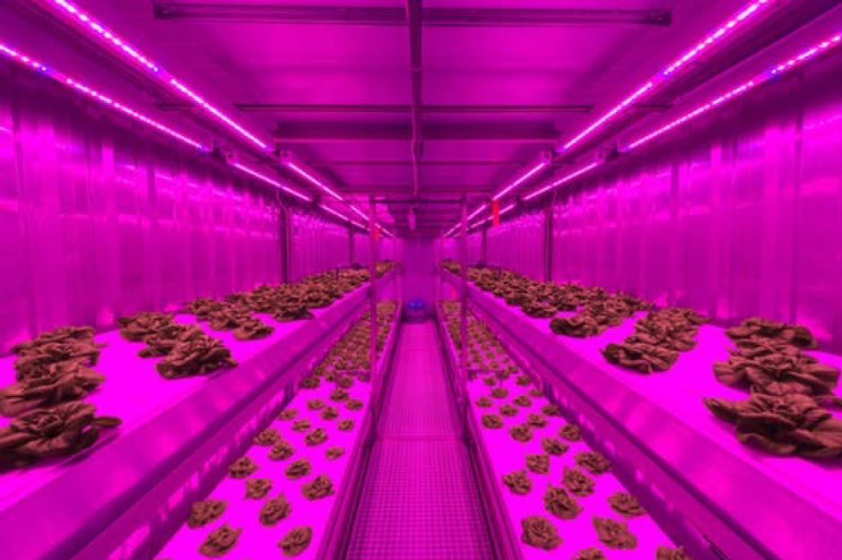 Priva start joint venture Infinite Acres voor indoor farming